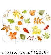 Clipart Of Autumn Leaves 2 Royalty Free Vector Illustration