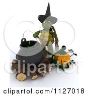 Clipart Of A 3d Witch Tortoise With A Halloween Pumpkin And Cauldron Full Of Eyeballs Royalty Free CGI Illustration