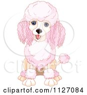 Cartoon Of A Cute Happy Pink Poodle Sitting Royalty Free Vector Clipart