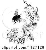Clipart Of A Retro Vintage Black And White Bumble Bee And Branch Royalty Free Vector Illustration by Prawny Vintage