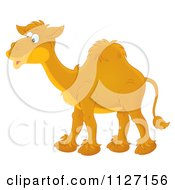 Cartoon Of A Happy Camel Royalty Free Clipart