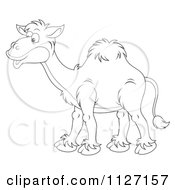 Cartoon Of A Happy Outlined Camel Royalty Free Clipart