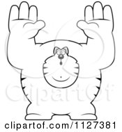 Cartoon Of An Outlined Buff Cat Giving Up Royalty Free Vector Clipart
