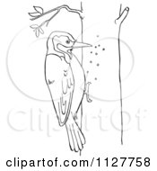 Cartoon Of A Retro Vintage Black And White Woodpecker On A Tree Line Drawing Royalty Free Vector Clipart