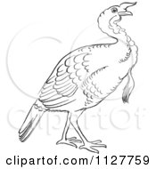Cartoon Of A Retro Vintage Black And White Gobbler Thanksgiving Turkey Bird Line Drawing Royalty Free Vector Clipart