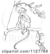 Cartoon Of A Retro Vintage Black And White Monkey Eating Fruit In A Tree Line Drawing Royalty Free Vector Clipart