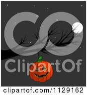 Cartoon Of A Halloween Jackolantern Pumpkin Hanging From A Bare Tree Branch At Night Royalty Free Clipart