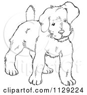 Cartoon Clipart Of An Outlined Alert Puppy Dog Black And White Vector Coloring Page