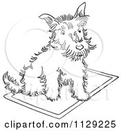 Cartoon Clipart Of An Outlined Scottie Dog On A Rug Black And White Vector Coloring Page by Picsburg