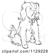 Cartoon Clipart Of An Outlined Cavalier King Charles Spaniel Dog Sitting Black And White Vector Coloring Page by Picsburg