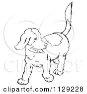Cartoon Clipart Of An Outlined Happy Puppy Looking Back Black And White Vector Coloring Page by Picsburg
