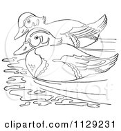 Cartoon Clipart Of An Outlined Wood Duck Pair Swimming Black And White Vector Coloring Page