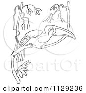 Cartoon Clipart Of An Outlined Wild Toucan In A Tree Black And White Vector Coloring Page