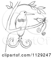 Cartoon Clipart Of Outlined Birds Of Paradise In A Tree Black And White Vector Coloring Page