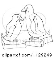 Cartoon Clipart Of Outlined Cute Baby Penguins On Ice Black And White Vector Coloring Page
