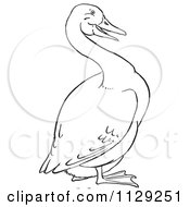 Cartoon Clipart Of An Outlined Goose Black And White Vector Coloring Page