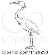 Cartoon Clipart Of An Outlined Heron Bird Black And White Vector Coloring Page