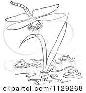 Cartoon Clipart Of An Outlined Dragonfly Over Frogs In A Pond Black And White Vector Coloring Page