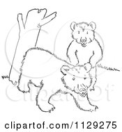 Cartoon Clipart Of Outlined Playful Bear Cubs By A Tree Trunk Black And White Vector Coloring Page