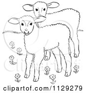 Cartoon Clipart Of Outlined Lambs In A Flower Field Black And White Vector Coloring Page