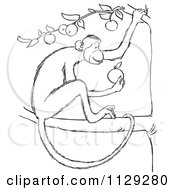 Cartoon Clipart Of An Outlined Monkey Eating In An Apple Tree Black And White Vector Coloring Page