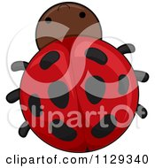 Cartoon Of A Cute Ladybug Royalty Free Vector Clipart by BNP Design Studio