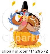 Cute Thanksgiving Turkey Bird Pilgrim In A Pumpkin