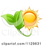Clipart Of A Shiny Sun And Green Leaves Royalty Free Vector Illustration