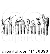 Clipart Of Retro Vintage Black And White Cats Performing For Animals On Posts Royalty Free Vector Illustration by Prawny Vintage
