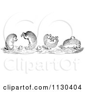 Clipart Of Retro Vintage Black And White Playful Hedgehogs Royalty Free Vector Illustration