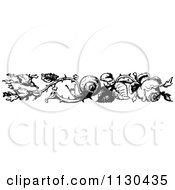 Clipart Of A Retro Vintage Black And White Rose And Snail Border Royalty Free Vector Illustration
