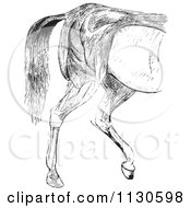 Clipart Of A Retro Vintage Engraved Horse Anatomy Of Hind Quarter Muscular Covering In Black And White Royalty Free Vector Illustration
