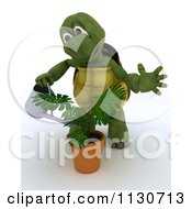 3d Tortoise Watering A Potted Plant