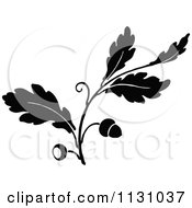 Clipart Of A Retro Vintage Black And White Oak Branch With Acorns 1 Royalty Free Vector Illustration by Prawny Vintage