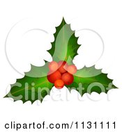 Clipart Of Christmas Holly Berries And Leaves Royalty Free Vector Illustration