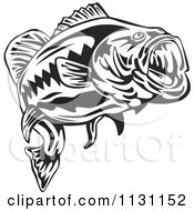 Clipart Of A Retro Black And White Largemouth Bass Fish Royalty Free Vector Illustration by patrimonio #COLLC1131152-0113