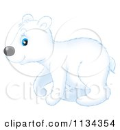 Cartoon Of A Cute Polar Bear Royalty Free Clipart by Alex Bannykh