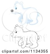 Cartoon Of A Cute Outlined And Colored Polar Bear Royalty Free Clipart by Alex Bannykh