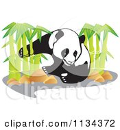 Clipart Of A Panda With Bamboo Stalks Royalty Free Vector Illustration by YUHAIZAN YUNUS