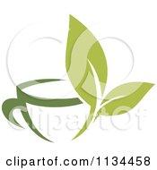 Cup Of Green Tea Or Coffee 3