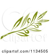 Clipart Of A Green Olive Branch 1 Royalty Free Vector Illustration
