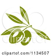 Clipart Of Green Olives On The Tree 1 Royalty Free Vector Illustration