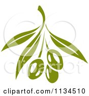 Clipart Of Green Olives On The Tree 2 Royalty Free Vector Illustration