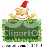 Cartoon Of A Happy Christmas Tiger Over A Holly Sign Royalty Free Vector Clipart