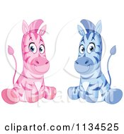Cartoon Of Cute Pink And Blue Zebras Sitting Royalty Free Vector Clipart