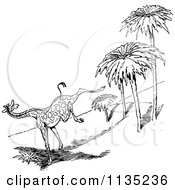 Clipart Of A Retro Vintage Black And White Scared Giraffe Running Royalty Free Vector Illustration by Prawny Vintage