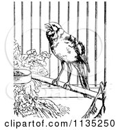 Clipart Of A Retro Black And White Canary In A Cage Royalty Free Vector Illustration by Prawny Vintage
