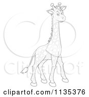 Cartoon Of A Cute Outlined Giraffe Royalty Free Vector Clipart by Alex Bannykh