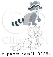 Cartoon Of A Cute Outlined And Colored Raccoons Royalty Free Vector Clipart by Alex Bannykh