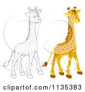 Cartoon Of A Cute Outlined And Colored Giraffe Royalty Free Vector Clipart by Alex Bannykh